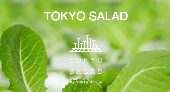 Toyko-Salad-1513801139353.jpg