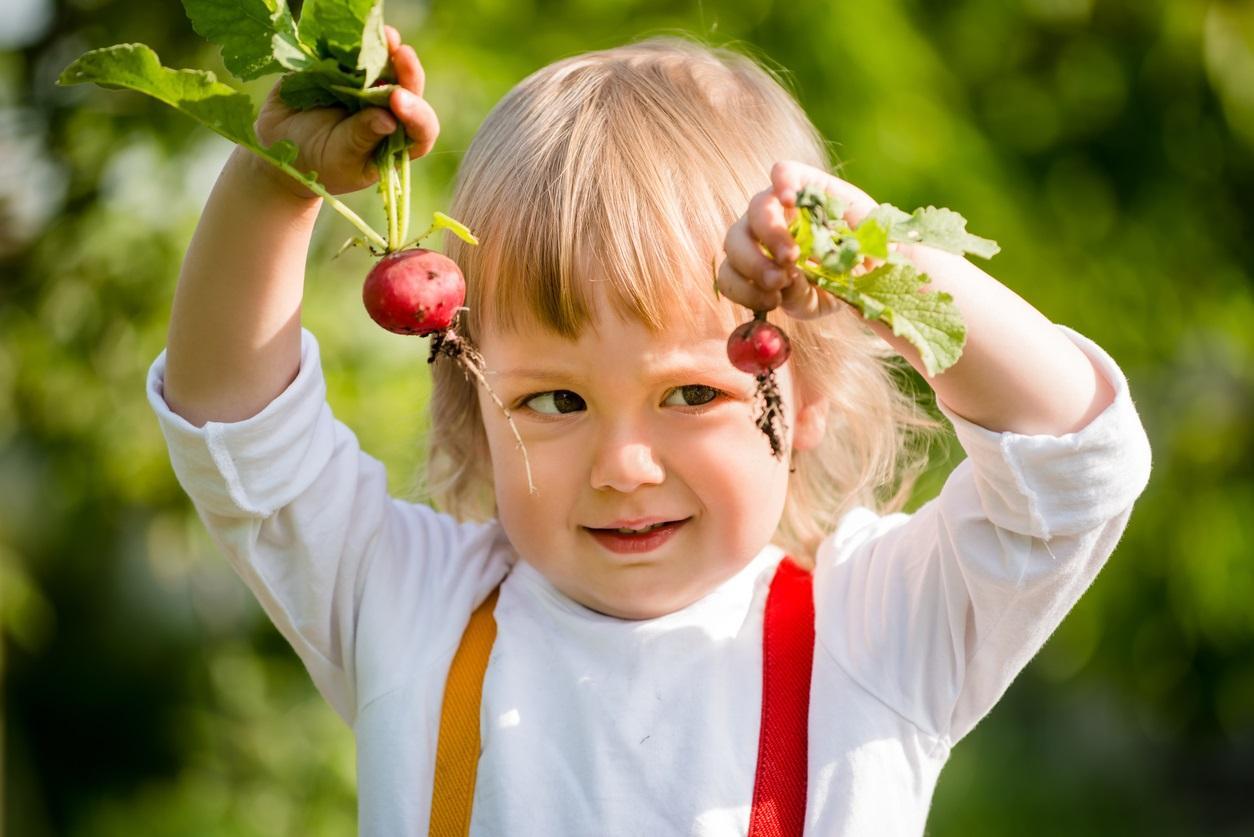 gardening1-1493842844232.jpg