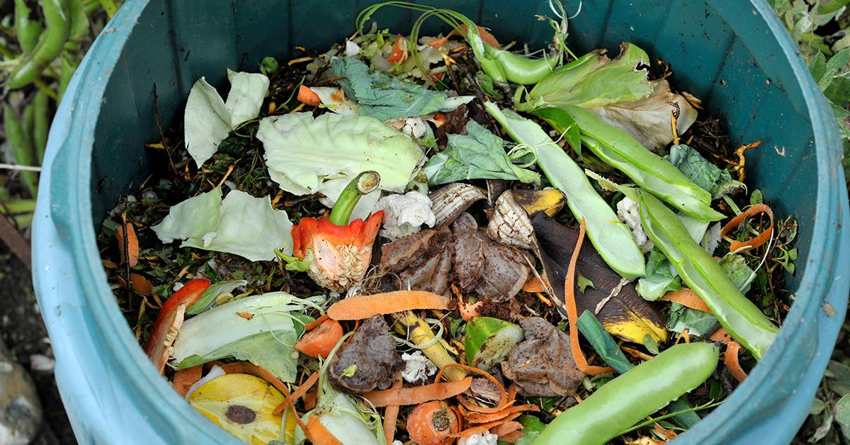 compost4-1539283317217-1539283319517.jpg