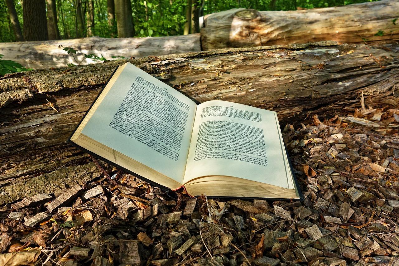 book-3356154_1280-1525363046946.jpg