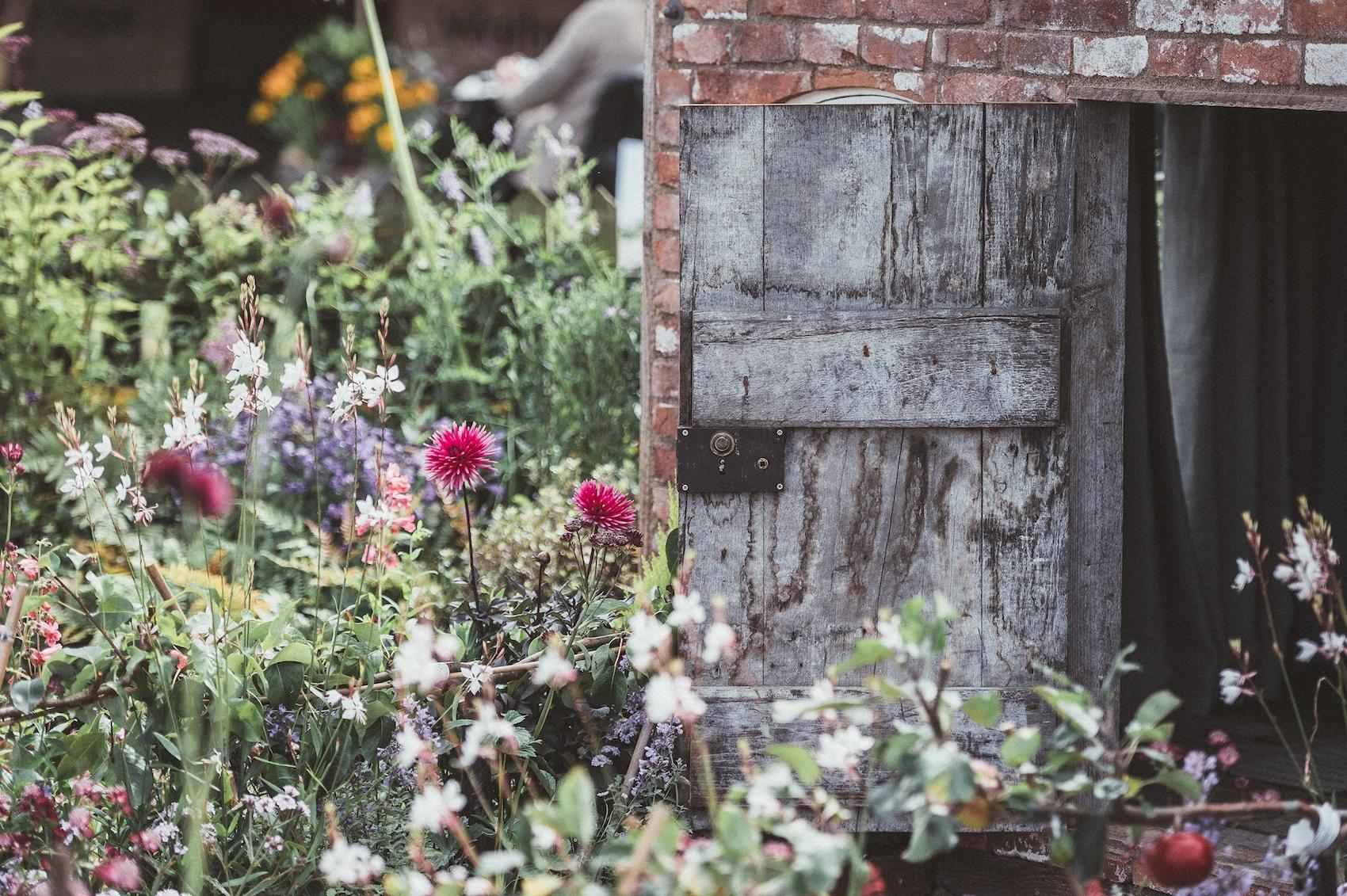 Ocean-Friendly Gardening Guide: How Your Yard Can Save Our Waterways