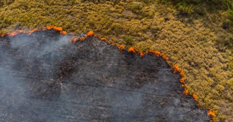 气候变化野火