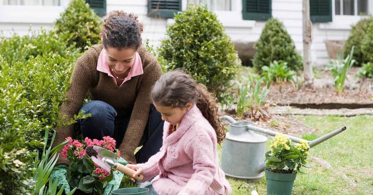 园艺如何帮助环境?