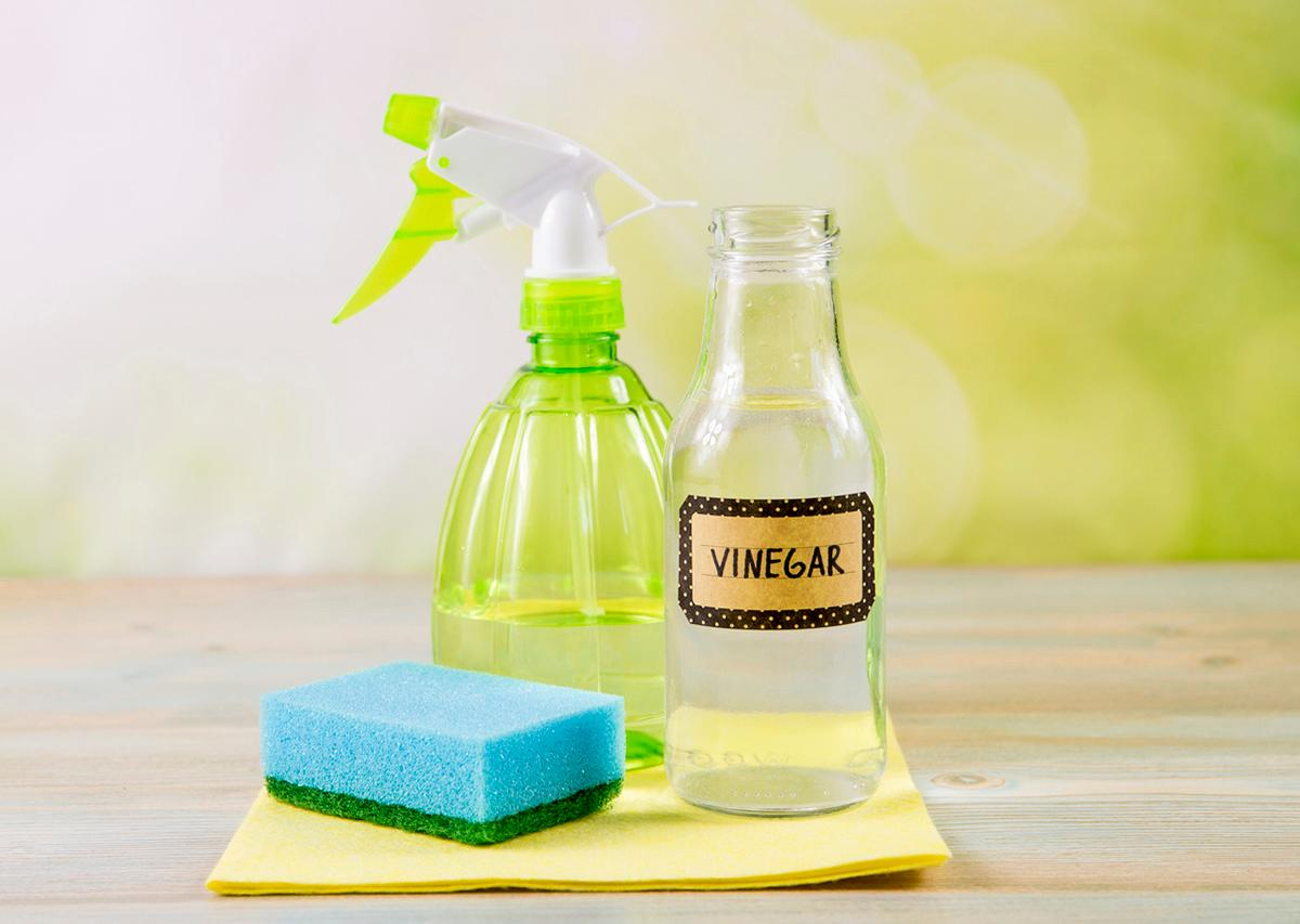 vinegar-cleaning-spray-1562084570412.jpg