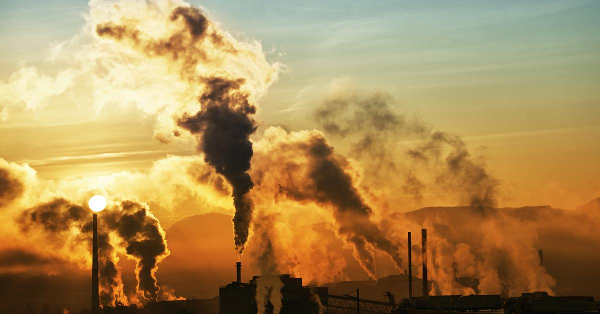 This Is How Air Pollution Impacts the Human Body