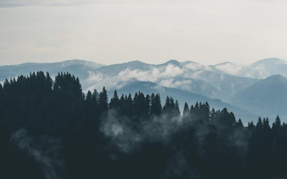 mountains-clouds-forest-fog-1525121715337.jpg