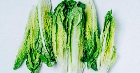 lettuce-recall-1605032617335.jpg