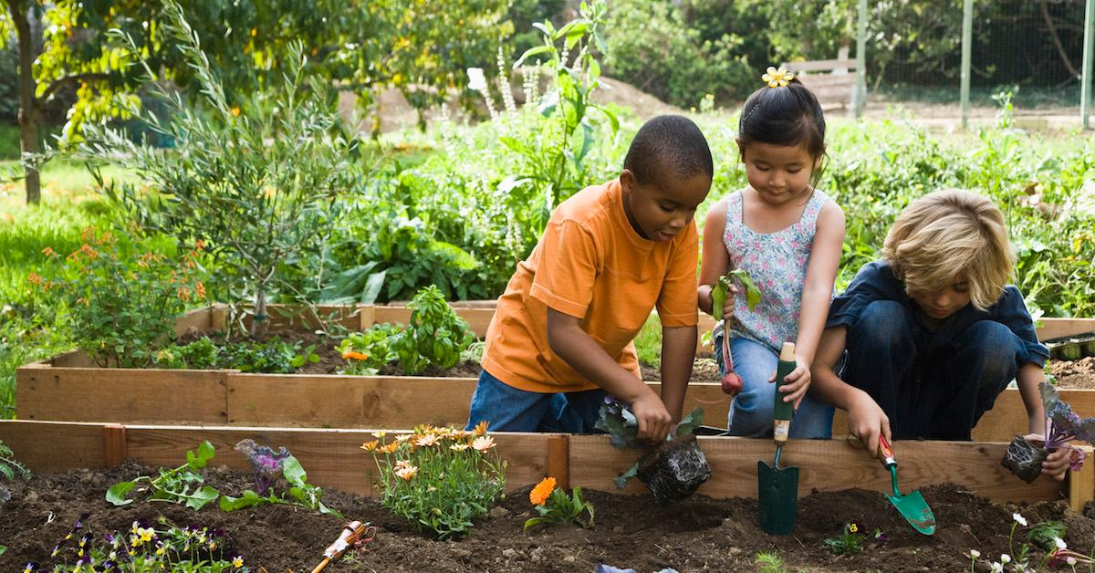 Joining a community garden