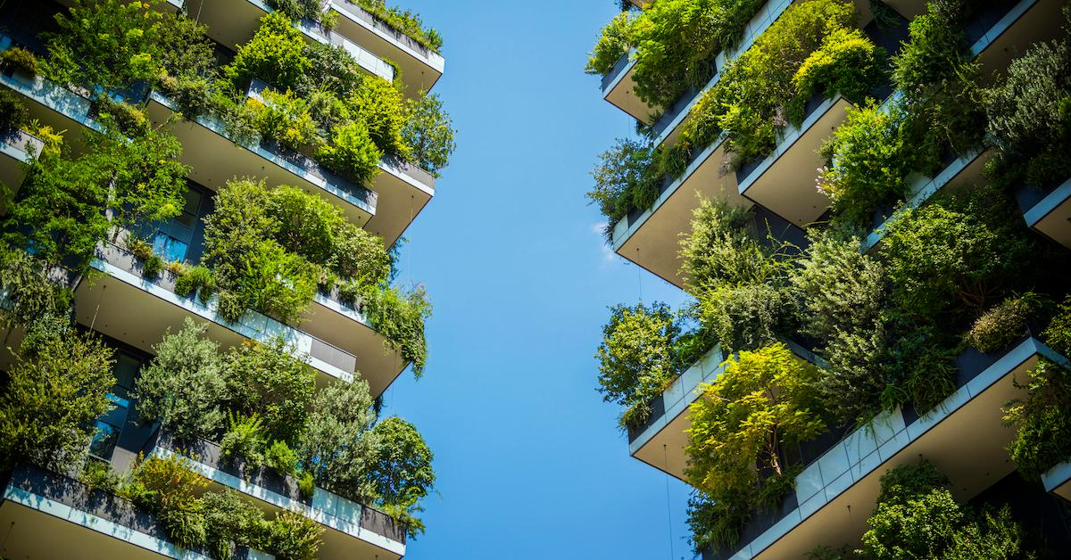 sustainable development leed