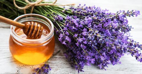 lavender-honey-1563288906538.jpg