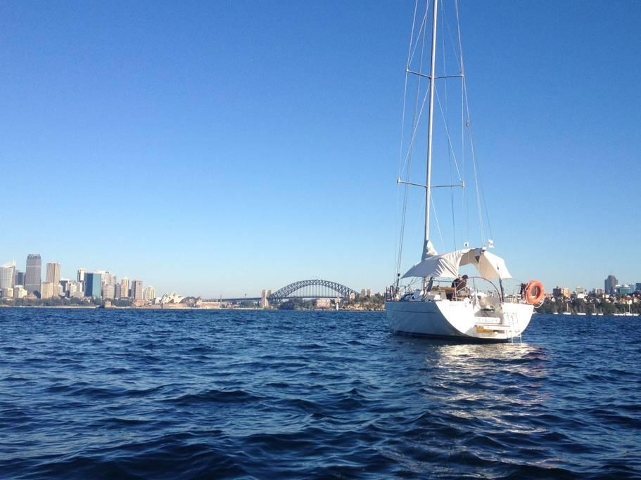 5.SailboatonSydneyHarbour($179)-1501860079142.jpg