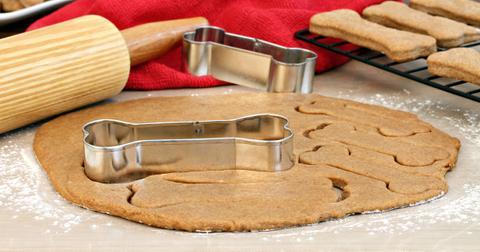 dog-treat-diy-1553712092848.jpg