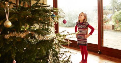 real-vs-fake-christmas-treecov-1607368561668.jpg