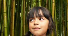 why is bamboo sustainable