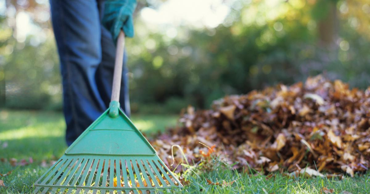 How to dispose of yard waste