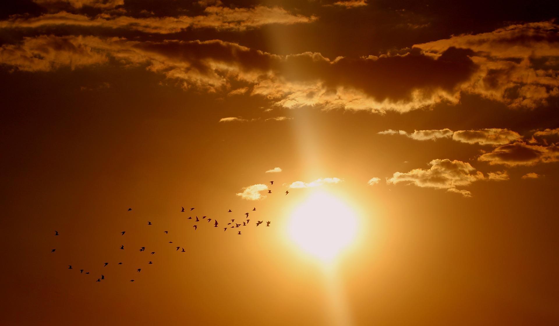 sunset-1625073_1920-1493664130615.jpg