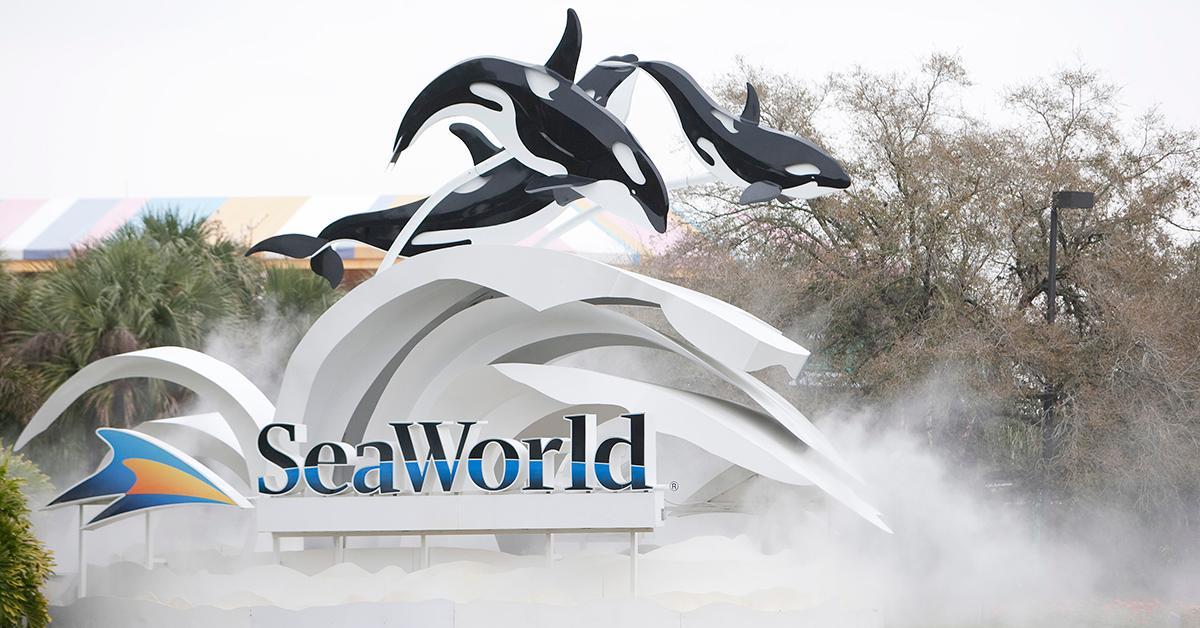 seaworld-shamu-ride-1548259136055.jpg