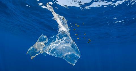 recycling-4-plastic4-1606780008661.jpg