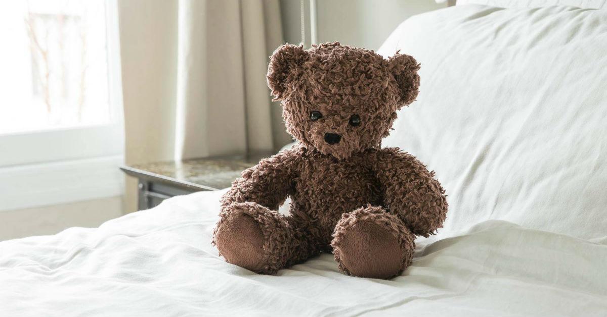 bearsforhumanity-1535644021351-1535644023099.jpg