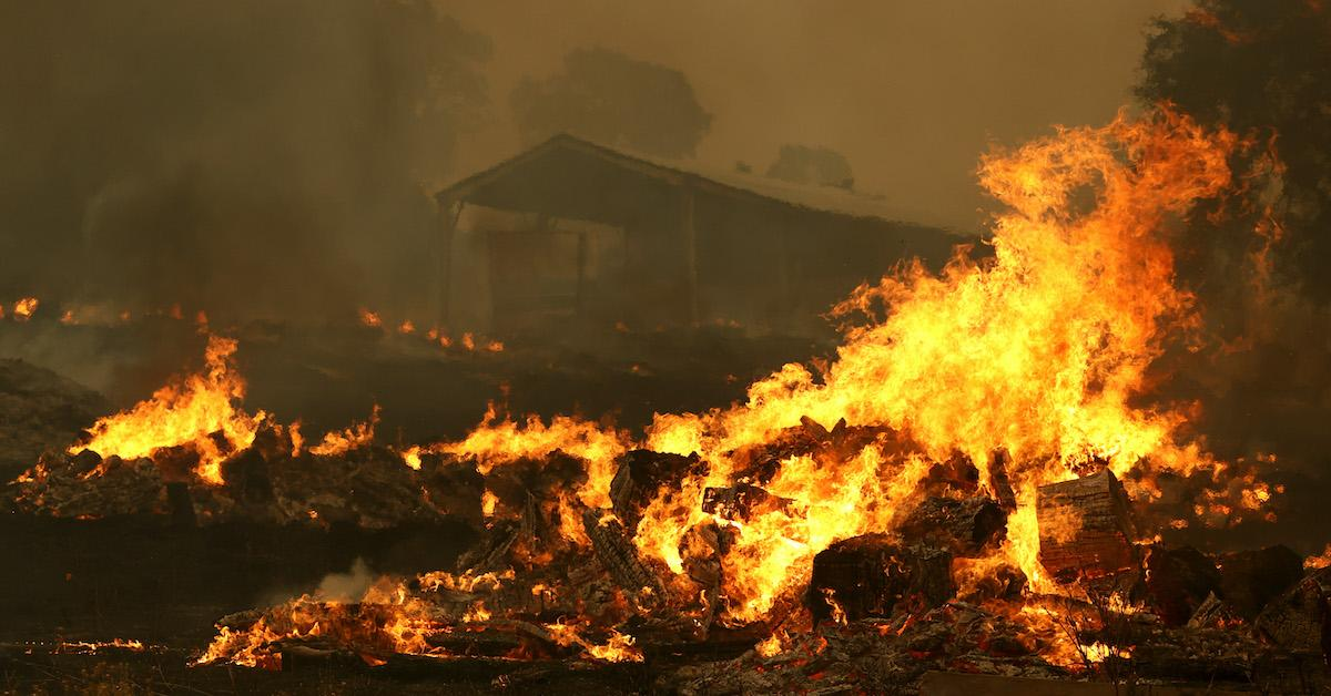 california-wildfires-climate-change-2020-1598375917866.jpg