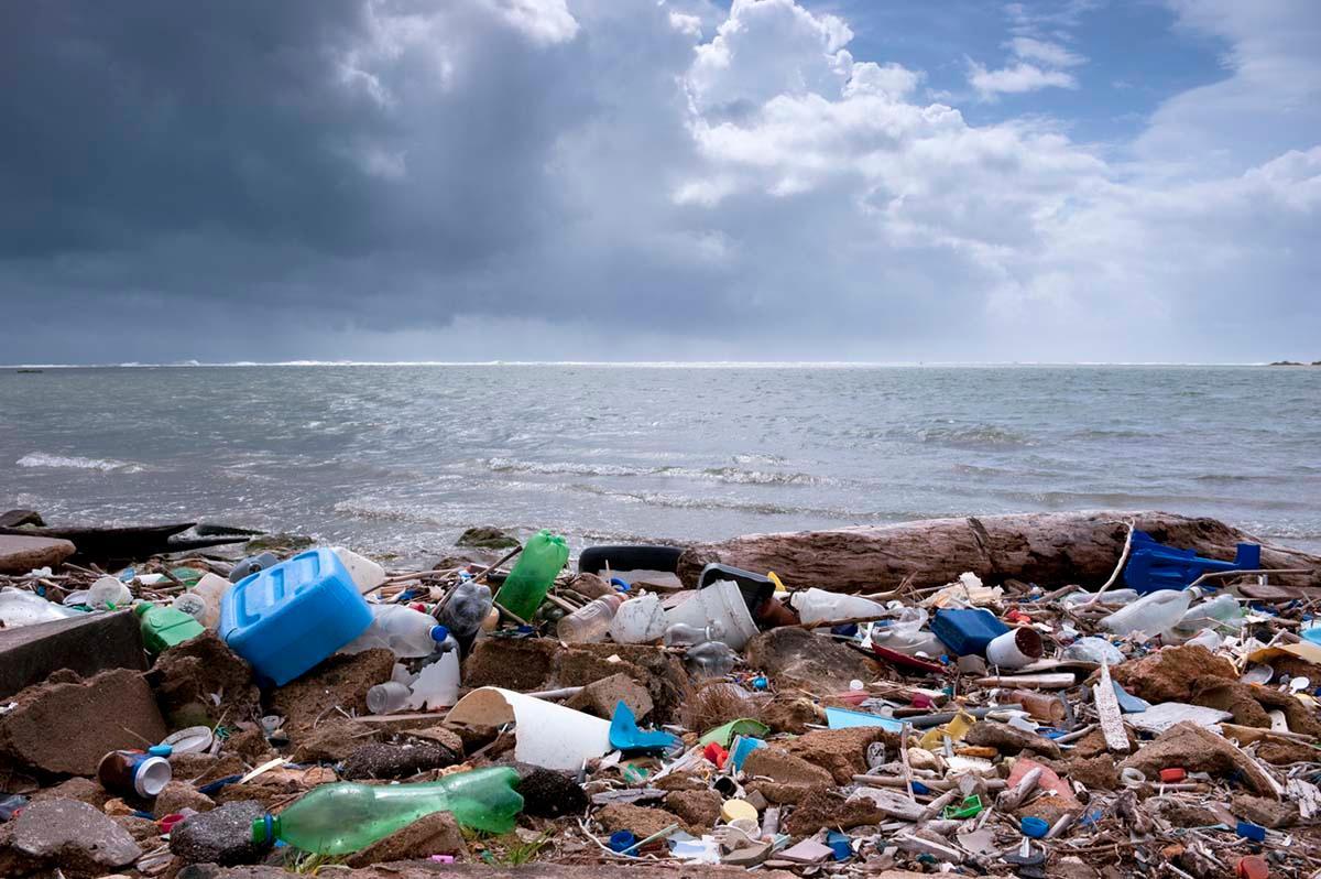 ocean-plastics-facts-1544471356755.jpg