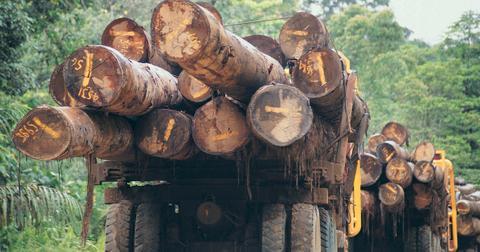 advantages biomass