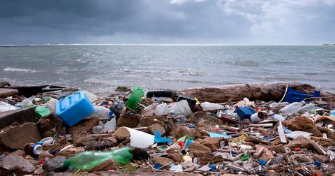 beach-pollution-1575409186276.jpg