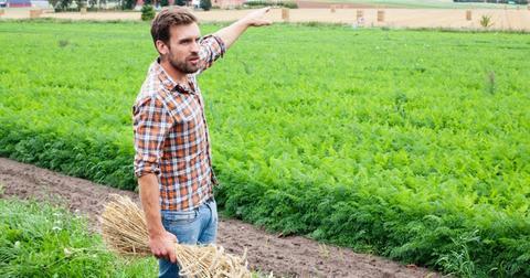 absolut-farmer-marcus-lundmark-1562867000685.jpg