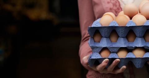 eggs vegan