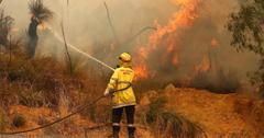 澳大利亚火灾