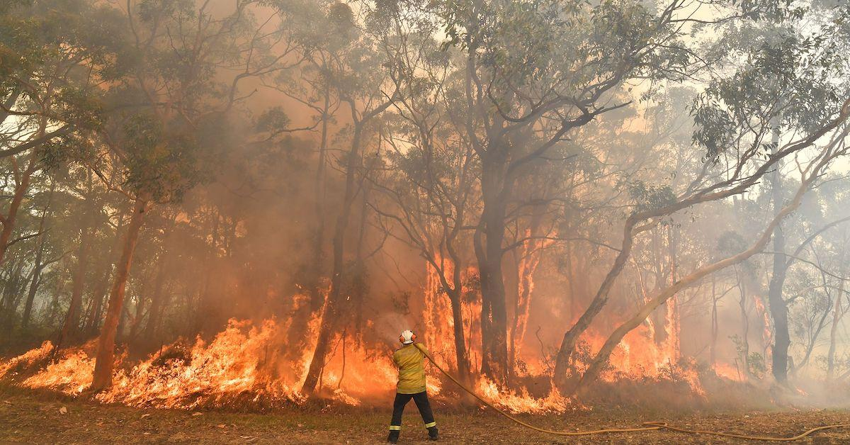 australian-bushfires-everything-you-need-to-know-1577988898510.jpg