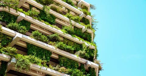 零废物有助于环境如何