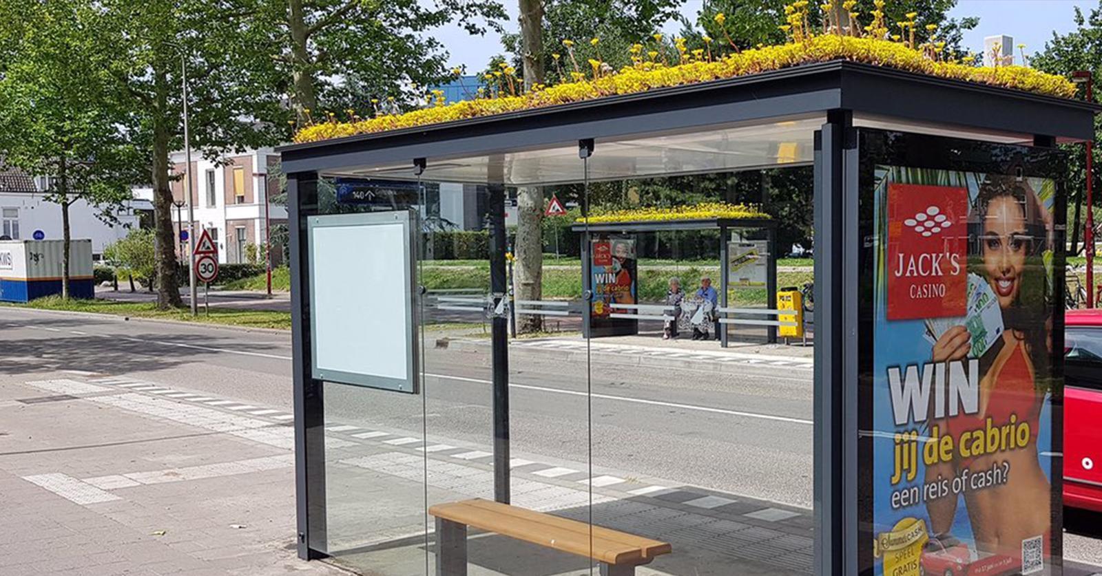 bus-stop-bees-1562873127347.jpg