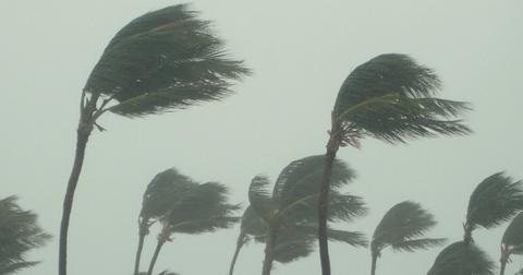 hurricane-1588604897666.jpg