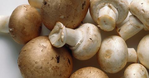 mushrooms sustainable
