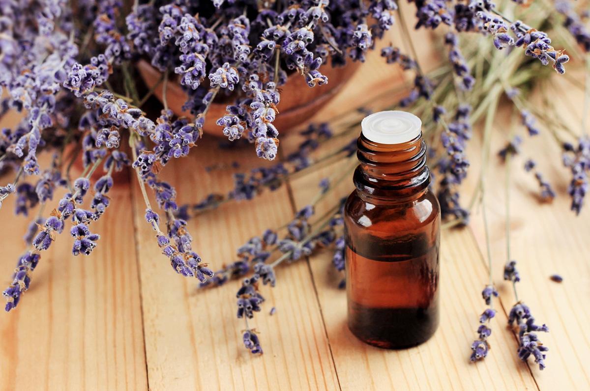 lavender-essential-oil-1563288866771.jpg