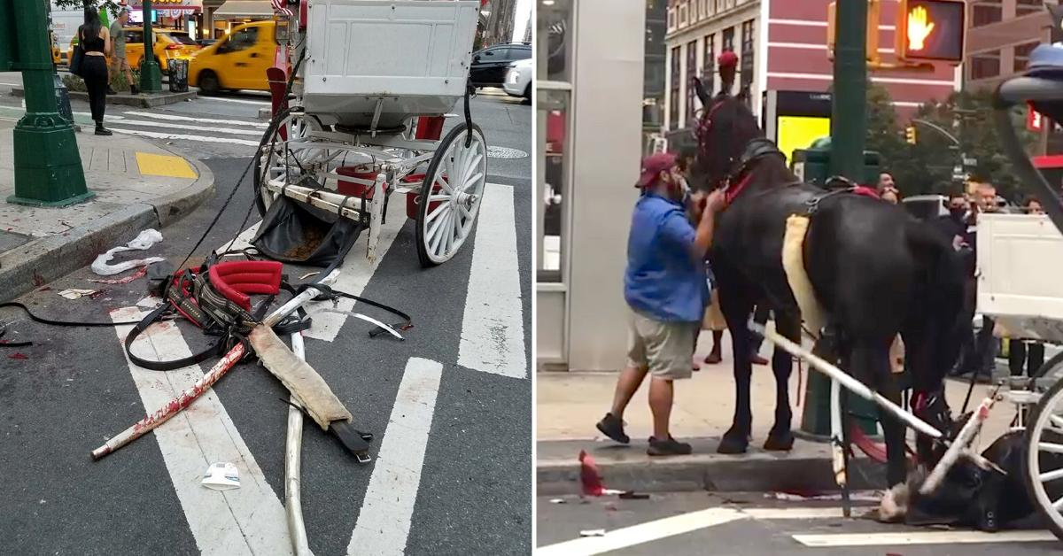 Horse carriage accident NYC